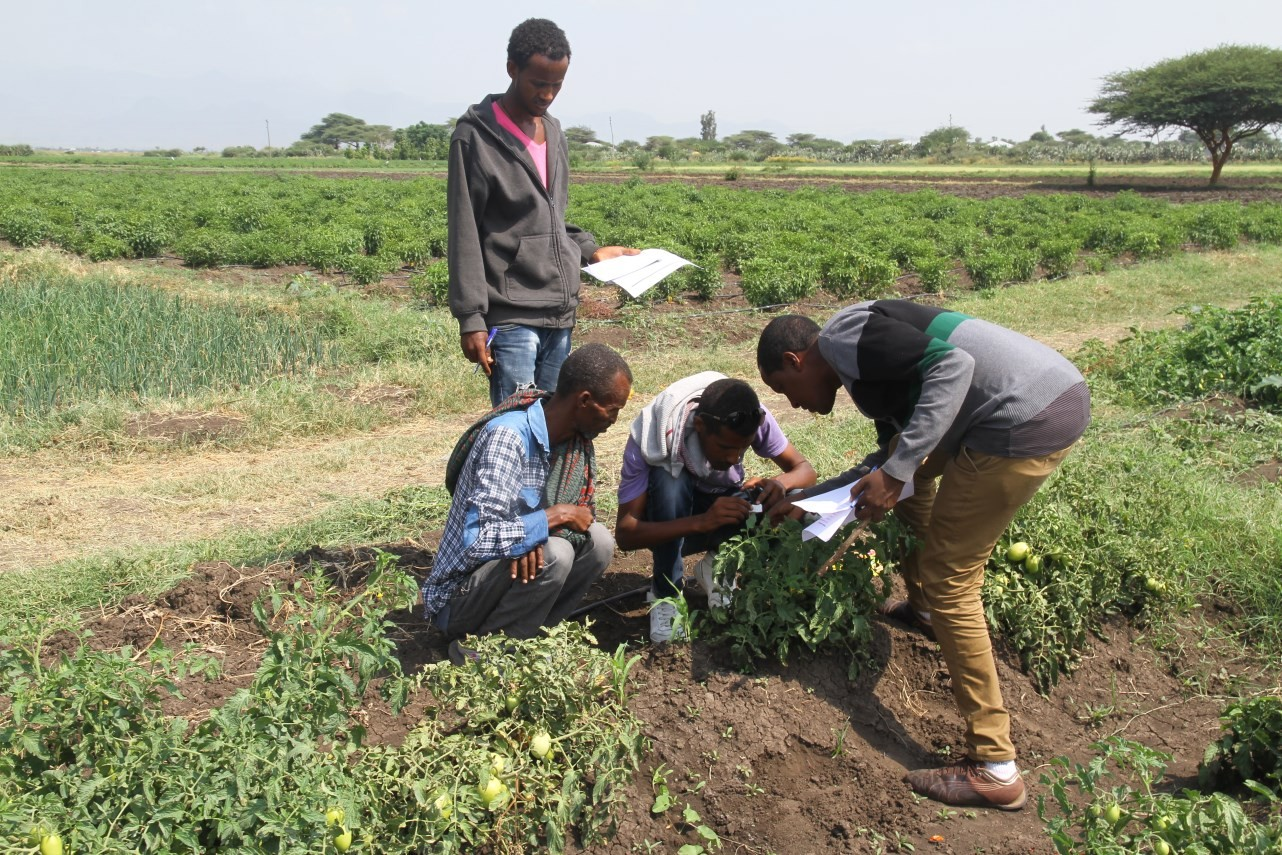 CropLife-Ethiopia-Ramp-up-SSP-Training-Activities.jpg