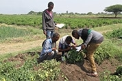 CropLife-Ethiopia-Ramp-up-SSP-Training_Activities.jpg